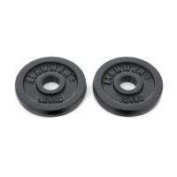 FINNLO dumbbell plates 2x 1.25 kg